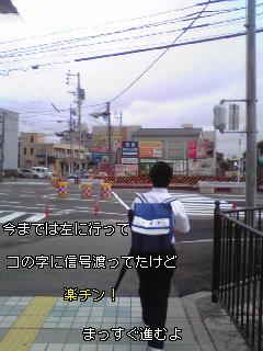 新しい横断歩道