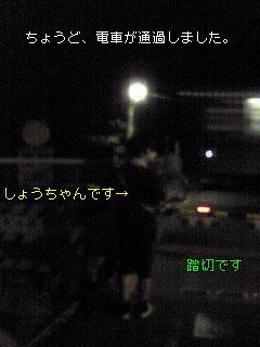 夜のお散歩(^O^)